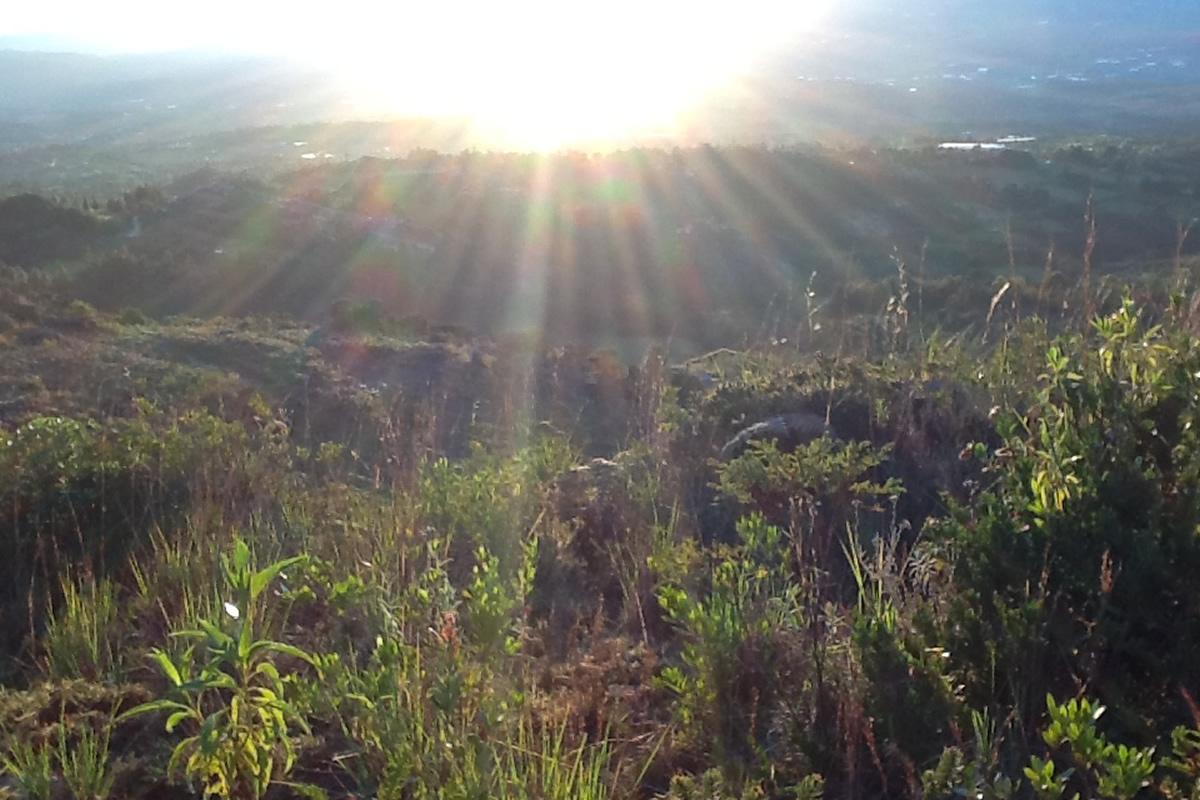 Venta finca tierra del sol