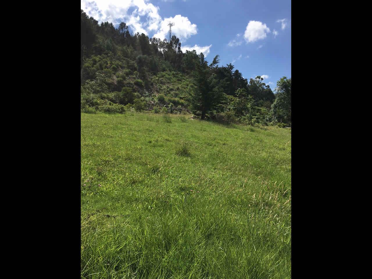 Venta de lote montaña en Villa de Leyva